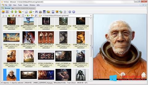 Posnetek zaslona XnView Windows 8.1