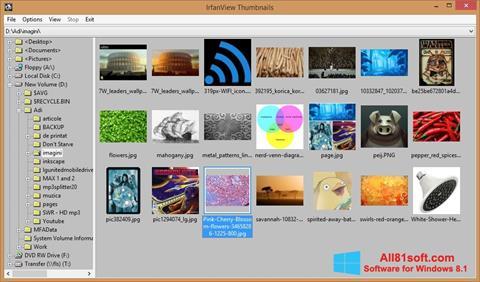 Posnetek zaslona IrfanView Windows 8.1